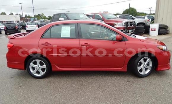 Buy Used Toyota Corolla Red Car in Kigali in Rwanda