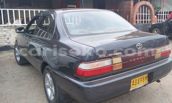 Buy Used Toyota Corolla Black Car in Gicumbi in Rwanda