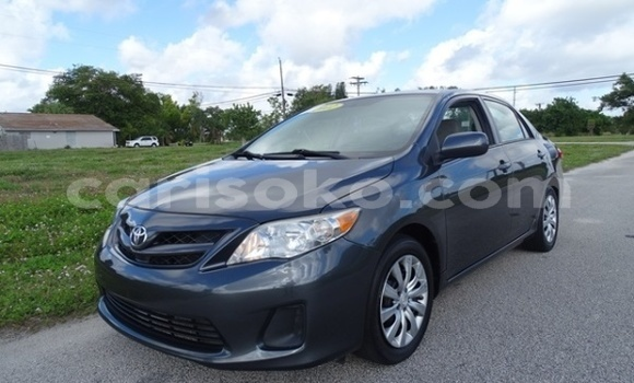 Buy Import Toyota Corolla Other Car in Musanze in Rwanda