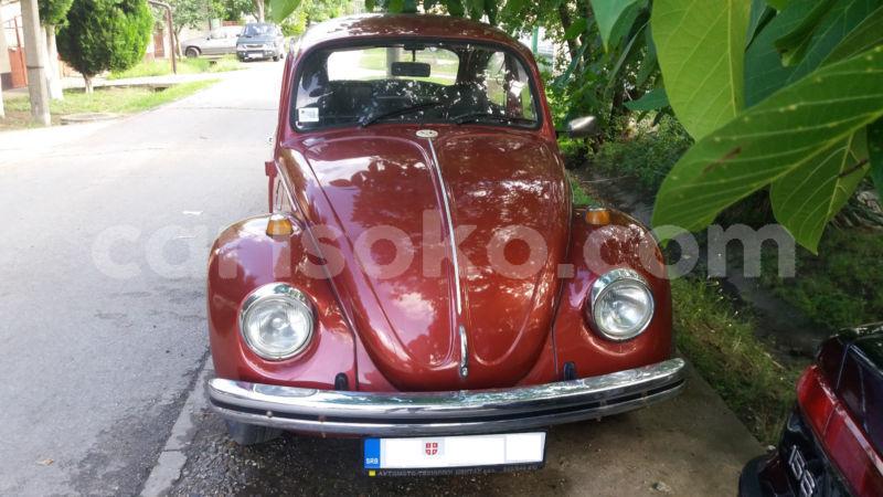 Big with watermark volkswagen beetle 2