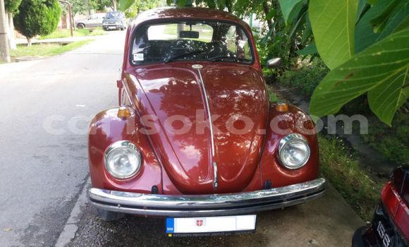 Buy Used Volkswagen Beetle Red Car in Kigali in Rwanda