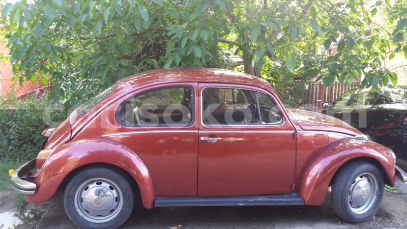 Big with watermark volkswagen beetle 1