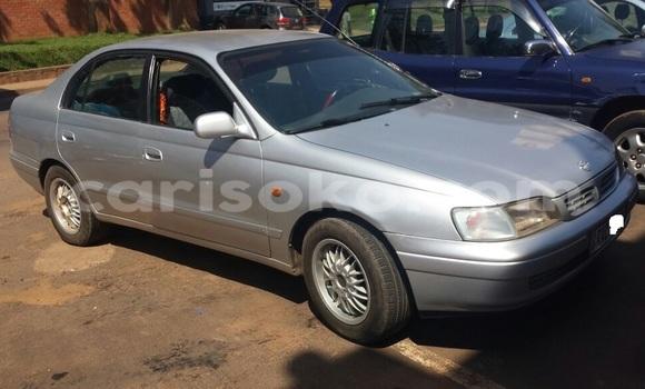 Buy New Toyota Carina Silver Car in Kigali in Rwanda