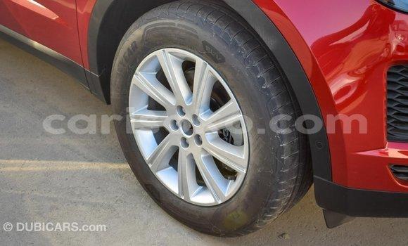 Buy Import Jaguar E-Pace Red Car in Import - Dubai in Rwanda