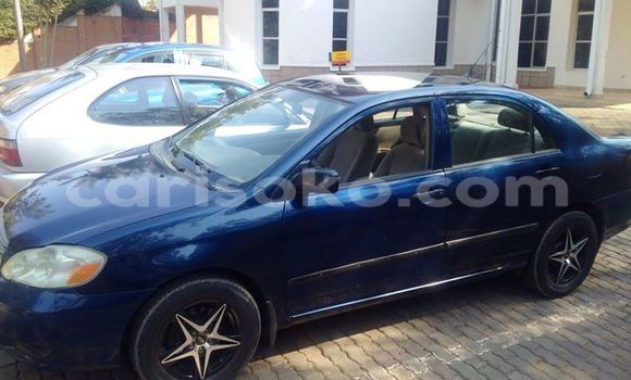 Buy Used Toyota Corolla Blue Car in Gicumbi in Rwanda