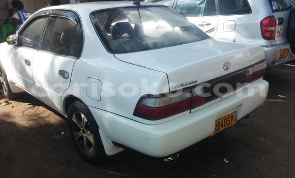 Acheter Neuf Voiture Toyota Corolla Blanc à Kigali, Rwanda