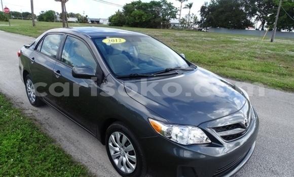 Buy Import Toyota Corolla Other Car in Kigali in Rwanda