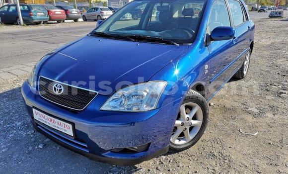 Buy Used Toyota Corolla Blue Car in Bokwango in Rwanda