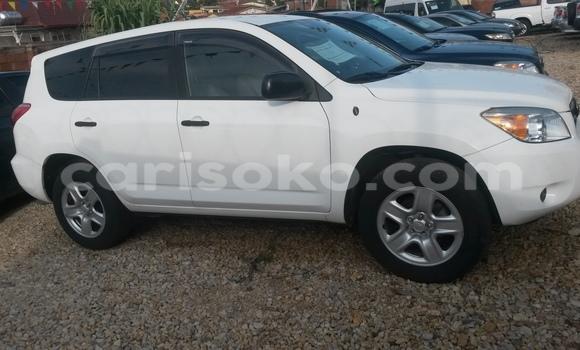 Buy New Toyota RAV4 White Car in Kigali in Rwanda