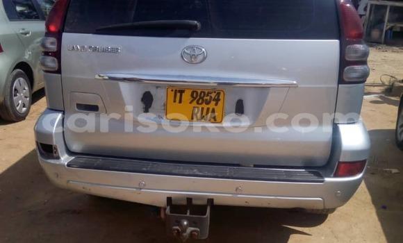 Buy New Toyota Prado Silver Car in Kigali in Rwanda