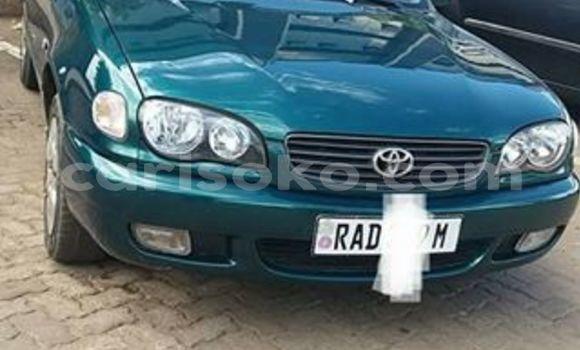 Buy Used Toyota Corolla Green Car in Kigali in Rwanda
