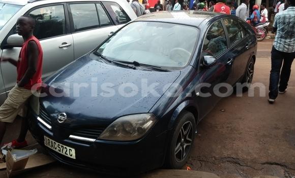 Buy Used Nissan Primera Blue Car in Kigali in Rwanda