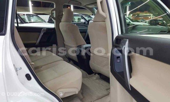 Gura Imported Toyota Prado White Imodoka i Import - Dubai mu Rwanda