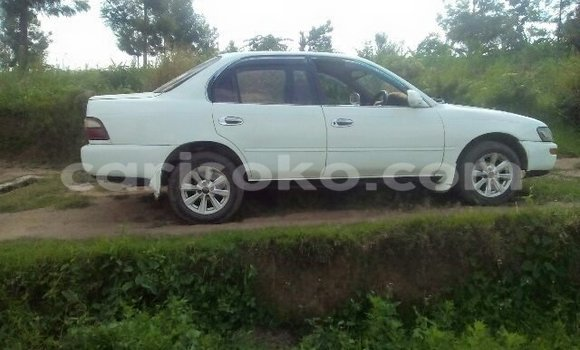 Buy Used Toyota Corolla White Car in Gicumbi in Rwanda