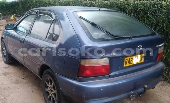 Buy Used Toyota Corolla Blue Car in Kigali in Rwanda