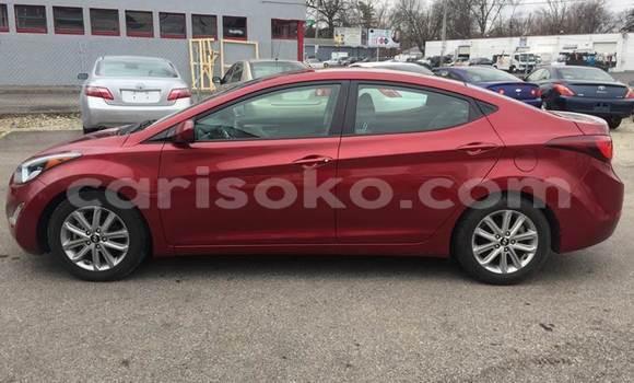 Buy Used Hyundai Elantra Red Car in Kigali in Rwanda