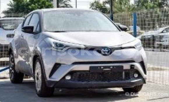 Buy Import Toyota C-HR Other Car in Import - Dubai in Rwanda