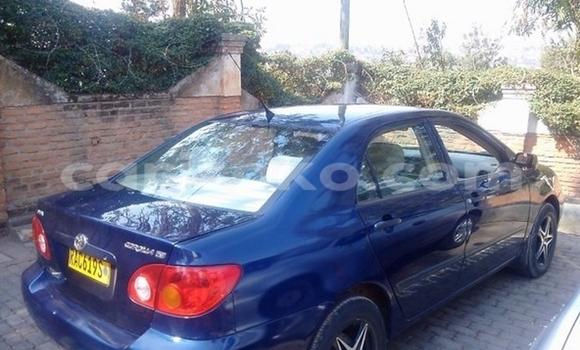 acheter occasion voiture toyota corolla bleu kigali rwanda carisoko. Black Bedroom Furniture Sets. Home Design Ideas