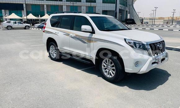 Buy Used Toyota Land Cruiser Prado White Car in Kigali in Rwanda