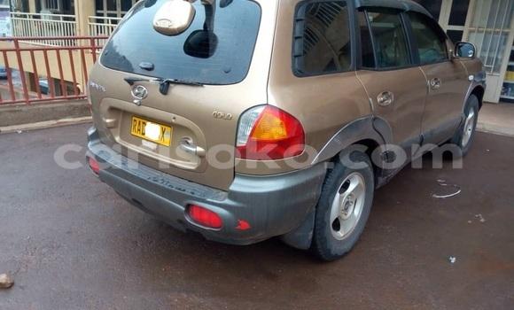 Buy Used Hyundai Santa Fe Brown Car in Kigali in Rwanda