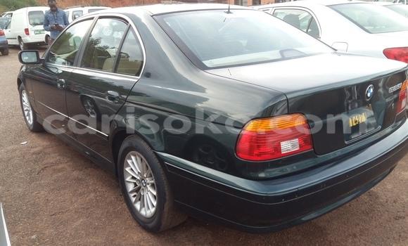 Buy Used BMW 5–Series Green Car in Kigali in Rwanda