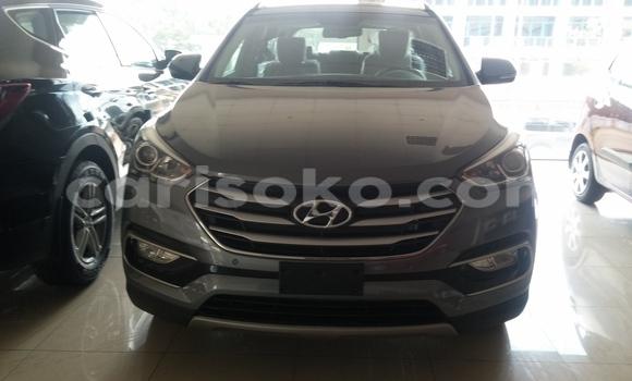 Acheter Neuf Voiture Hyundai Santa Fe Gris à Kigali au Rwanda