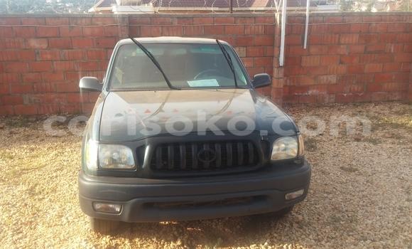 Acheter Occasions Voiture Toyota Tacoma Vert à Kigali au Rwanda