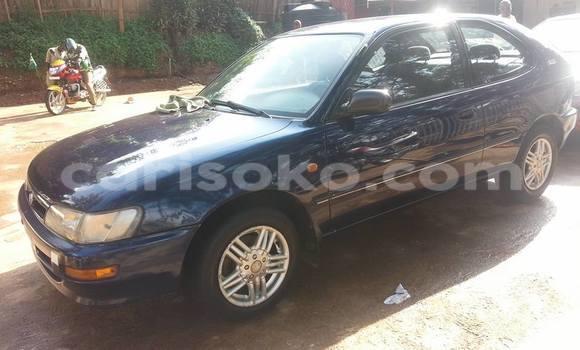 Buy Used Toyota Corolla Blue Car in Gicumbi in Rwanda