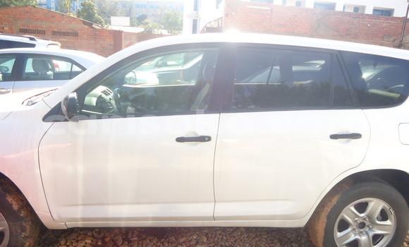 Buy Used Toyota RAV4 White Car in Kigali in Rwanda