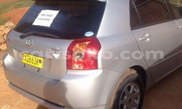Acheter Occasion Voiture Toyota Allex Gris à Gicumbi au Rwanda