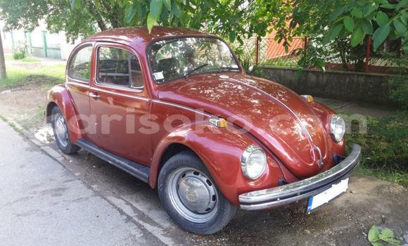 Medium with watermark volkswagen beetle