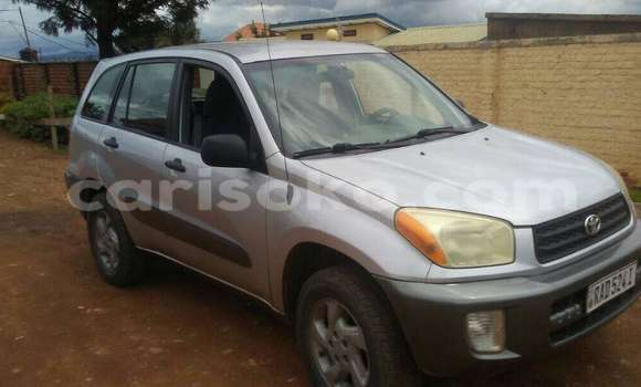 Buy New Toyota RAV4 Silver Car in Kigali in Rwanda