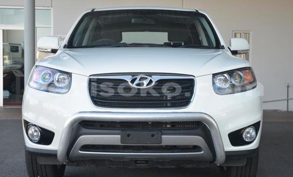 Buy Used Hyundai Santa Fe White Car in Kigali in Rwanda