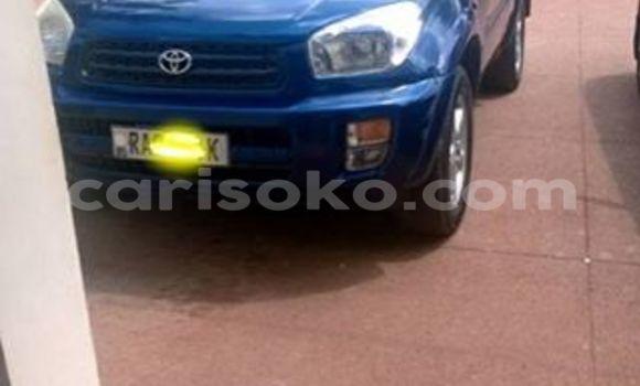 Buy Used Toyota RAV4 Blue Car in Gicumbi in Rwanda