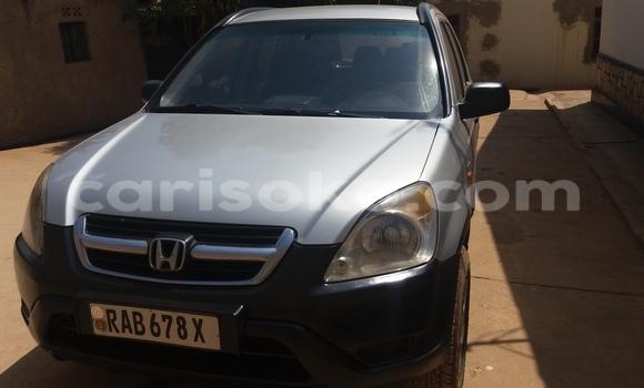 Acheter Occasion Voiture Honda CR-V Gris à Kigali au Rwanda