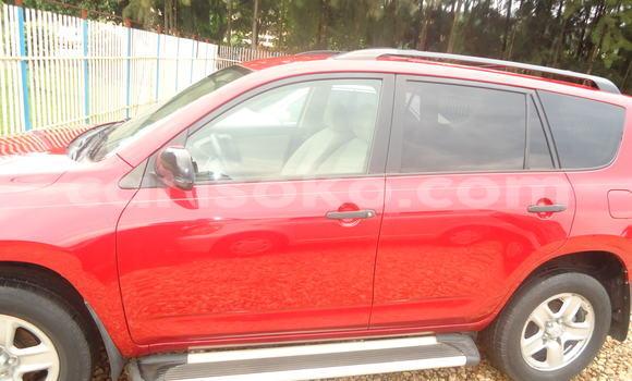 Acheter Occasion Voiture Toyota RAV4 Rouge à Kigali, Rwanda