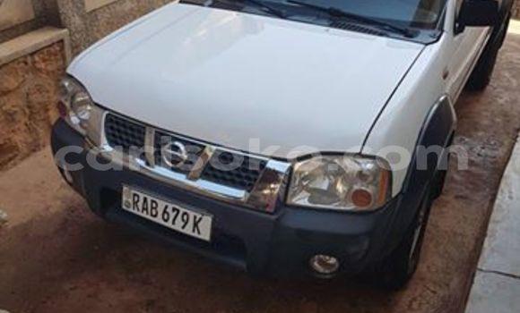 Buy New Nissan Hardbody White Car in Kigali in Rwanda