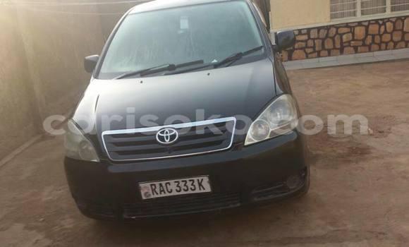 Acheter Occasion Voiture Toyota Ipsum Noir à Kigali, Rwanda