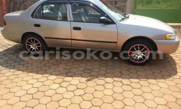 Acheter Occasions Voiture Toyota Corolla Gris à Kigali au Rwanda