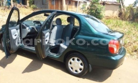 Buy Used Toyota Echo Car in Kigali in Rwanda