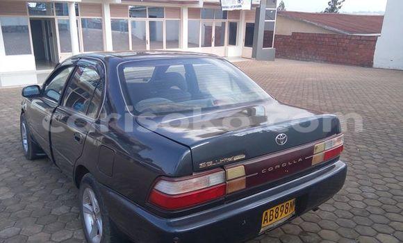 Buy Used Toyota Corolla Black Car in Gicumbi in Rwanda