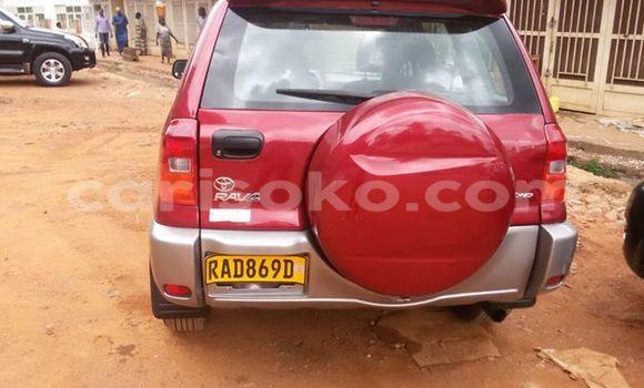 Buy Used Toyota RAV4 Red Car in Kigali in Rwanda