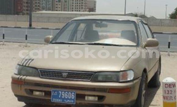 Buy Used Toyota Corolla Car in Kigali in Rwanda