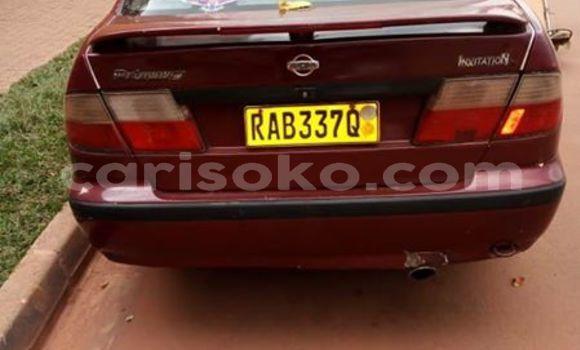 Buy Used Nissan Primera Red Car in Kigali in Rwanda