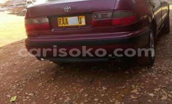 Buy Used Toyota Corona Red Car in Kigali in Rwanda