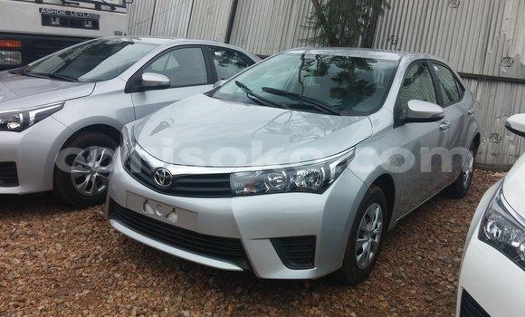 Buy New Toyota Corolla Silver Car in Kigali in Rwanda